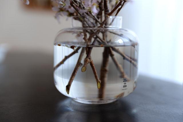 花瓶の内側に当たるようにカットします